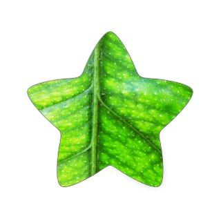 natural Green leaf leaves Trees Earth Beautiful D Star Stickers
