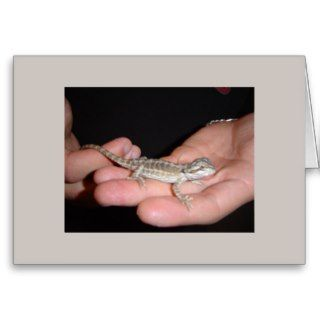 Baby Bearded Dragon Card