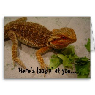 Heres Lookin at You, Bearded Dragon Birthday Cards