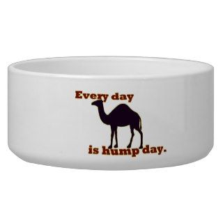 Camel Every Day is Hump Day Pet Water Bowl