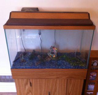 30 gallon fish tank weight meijer pet food supplies