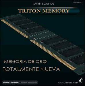 New 64MB Gold Memory Korg Triton TR Le Studio Extreme Rack Edo SIMM