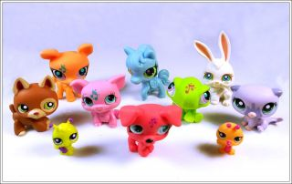Lot of 10 Littlest Pet Shop LPS Cat Dog Toy Animals Figures Child Girl Xmas PS49