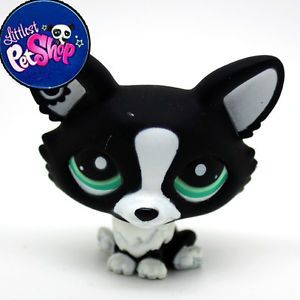 Littlest Pet Shop LPS Toy Chihuahua Black Dog Animal Figures Collection 2160