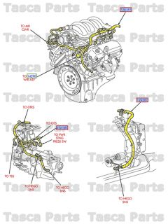 New Engine Compartment Main Wiring Harness 2005 Ford Excursion 6 0L Diesel