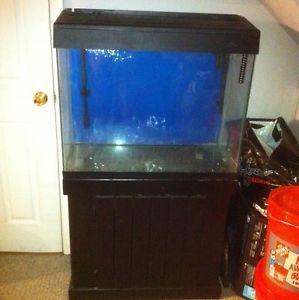 50 vs 75 gallon aquarium 55 gallon aquarium ideas 2017 for 55 gallon hexagon fish tank
