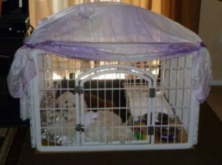 Iris Plastic Exercise Containment Pet Pen Dogs Cats White Lowered Price