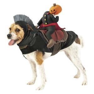 Headless Horseman Rider Pet Costume Dog Halloween Costume Sz Large