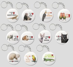 "Pet Keychains ""Ferret Kitty Iguana Sphynx Love Bird Cockatiel Bearded Dragon"""