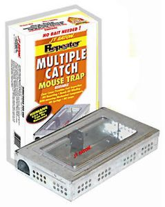 Eaton Multiple Catch Metal Mouse Trap Inspec Window
