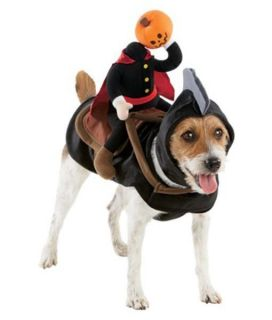 New Headless Horseman Horse Pumpkin Dog Halloween Pet Costume Extra Large XL