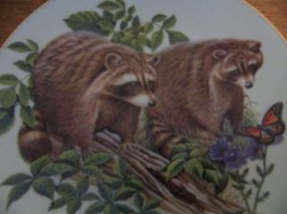 Richard Timm Porcelain Hand Painted Numbered Plate Raccons Gold Trim 804 GUC