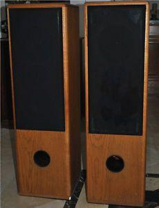 Custom Floor Standing Speakers Peerless Tweeters Nice Sounding