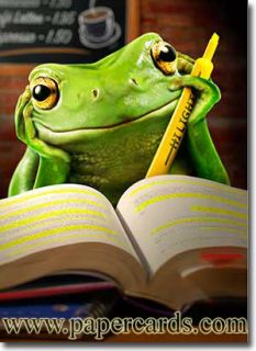 Frog Studying Funny Graduation Card Greeting Card by Avanti Press