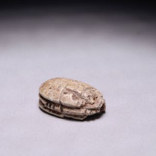 Ancient Egyptian Inscribed Steatite Scarab Beetle Amulet 664