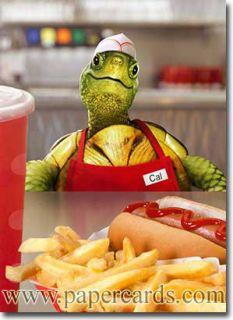 Turtle Fast Food Employee Funny Birthday Card Greeting Card by Avanti Press