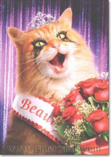 Cat Beauty Queen Funny Birthday Card Greeting Card by Avanti Press