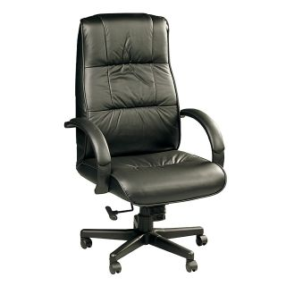 Raynor Ace High Back Leather Chair 47 H x 27 W x 25 D Black Frame Black Leather