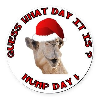 Guess What Day it Is Hump Day Camel Round Car Magn byGifts1