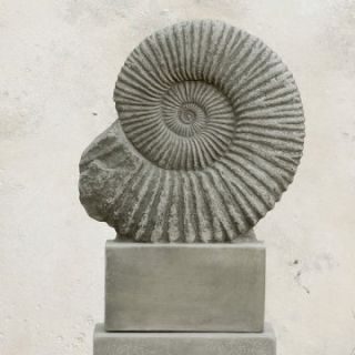 Campania International Ammonite Cast Stone Garden Statue   Garden Statues