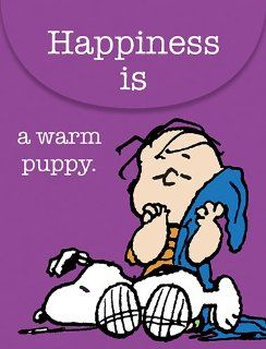"Graphique   Happiness is a Warm Puppy Purse Notes, 3 x 4"", Multi Colored, 75 note pages : Memo Paper Pads : Office Products"